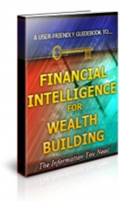 Product picture Financial Intelligence for Wealth Building - PLR